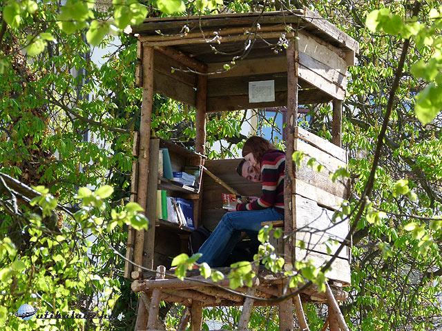 Pilsen vadászles könyvtár