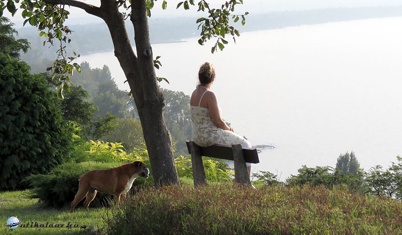 Balatonvilagos-magaspart-nos-kutyas-utikalauz-hu-gyorffya