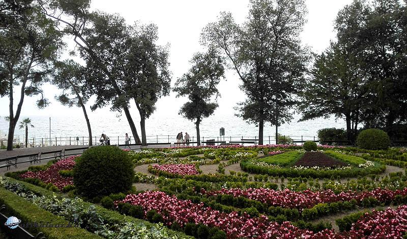 Park Angiolia