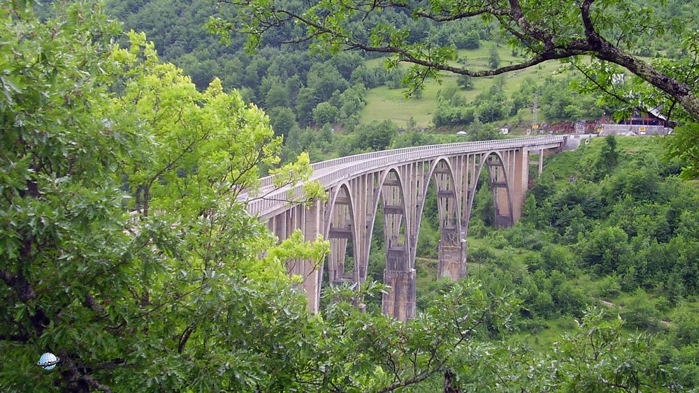 Híd a Tara fölött, 1937-ben kezdték építeni